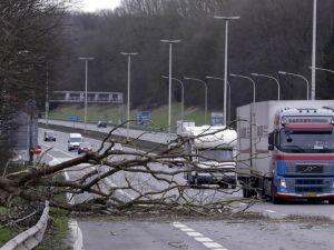 Avrupa fırtınaya teslim