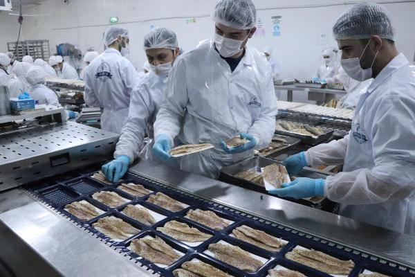 Avrupa, denizsiz Denizli'nin balığını yiyor galerisi resim 1
