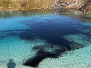Polis fotoğraf çekenleri durdurmak için gölü siyaha boyadı