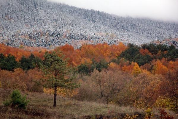 Türkiye'de bir günde dört mevsim galerisi resim 4