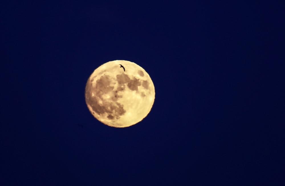 Süper Ay'a saatler kaldı galerisi resim 2