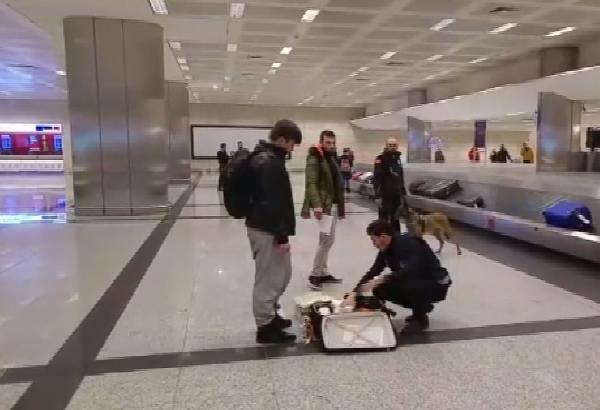 Hollandalı turistler köpekle arandı galerisi resim 1