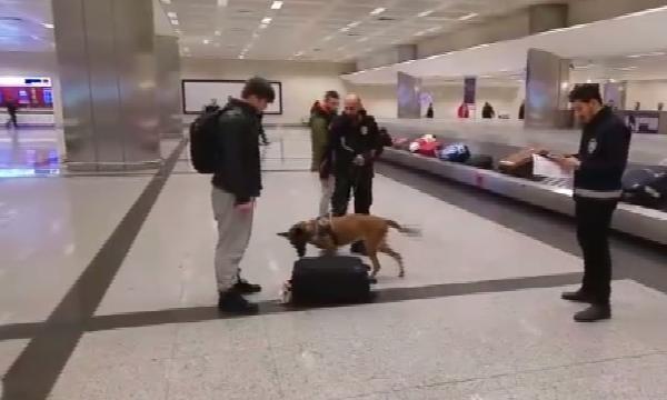 Hollandalı turistler köpekle arandı galerisi resim 2