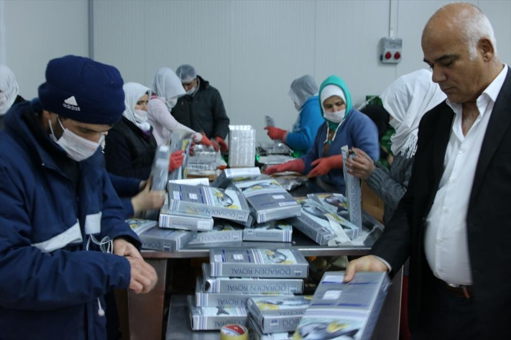 Konya'dan 15 ülkeye balık ihraç ediyor galerisi resim 7