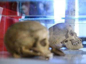 Almanya soykırım kemiklerini teslim etti