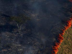 Amazon yangınları uzaydan görüntülendi