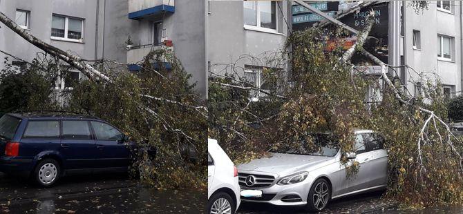 Almanya'da fırtına hayatı felç etti