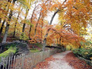 Brüksel, sonbaharda kartpostalları aratmıyor