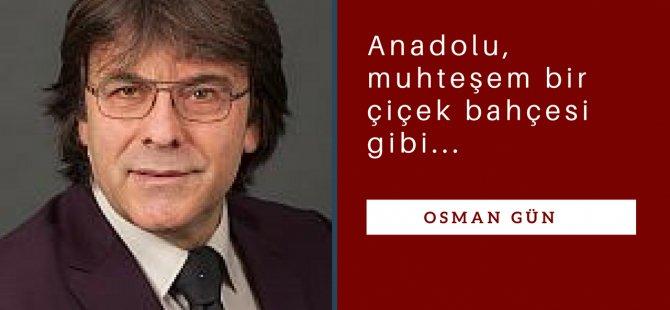 Türkiye'nin renkleri...
