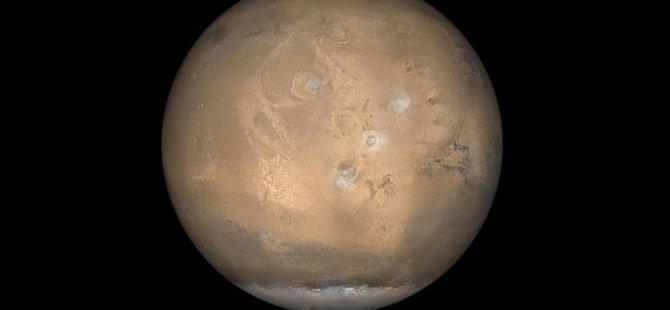 Mars'ta taze sebze yetiştirmeyi başardılar