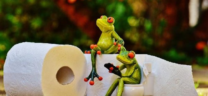 Lavaboya değil, tuvalete gidiyoruz