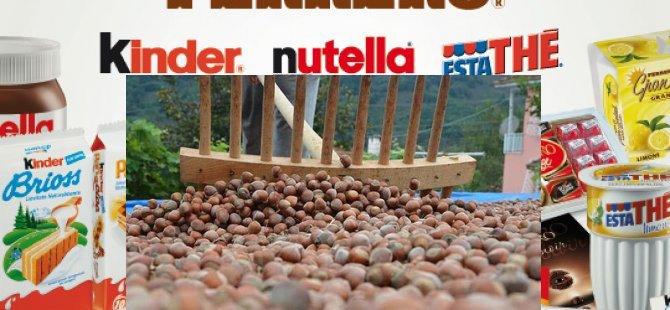 Nutella Türk fındığına alternatif arıyor