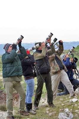Karacabey, kuş fotoğrafçılarının akınına uğrayacak
