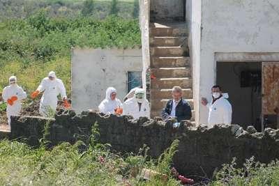 Bandırma'da bir yumurta üretim tesisinde daha kuş gribi görüldü