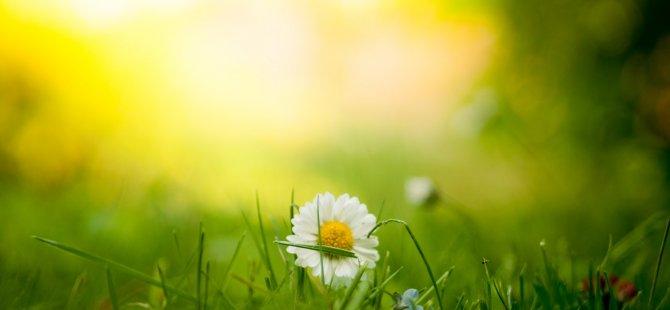 Paskalya'da havalar güneşli olacak