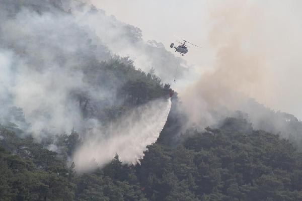 Orman yangınlarında sevindiren yıl