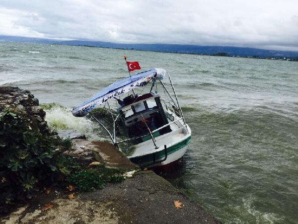 Fırtına yüzünden kıyıya vurdu