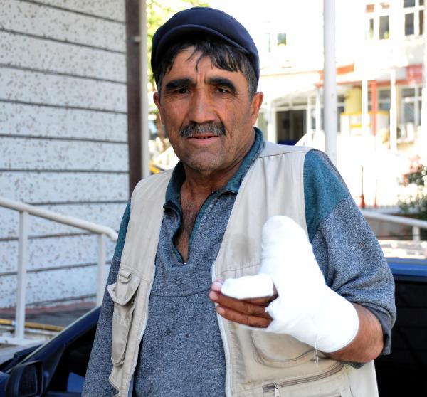 Köyde köpeğin saldırısıyla yaralandı, şikayetçi oldu