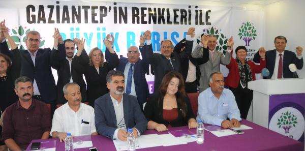 HDP'li Toğrul: 1 Kasım'da halk iradesini yine meclise taşıyacağız