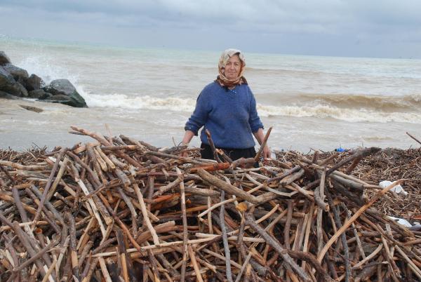 Kışlık odunlarını sahilden topladılar