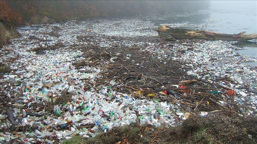 Plastik sayısı balık sayısını geçecek