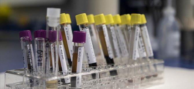 Hepatit yılda 1,4 milyon can alıyor