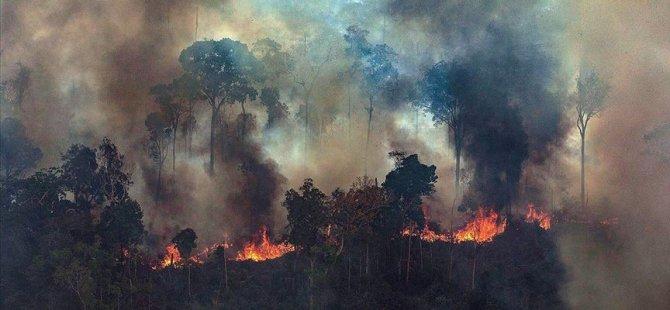 G7'den Amazonlar için 20 milyon avro
