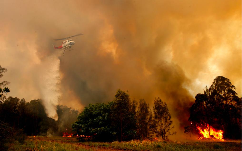 Orman yangını: En az 2 ölü, 100 ev yıkıldı