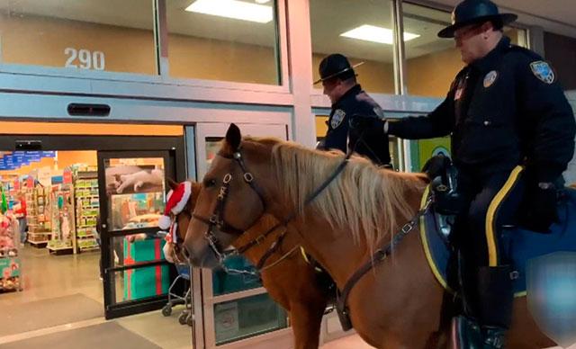 Polis atıyla evcil hayvan dükkanını teftiş etti