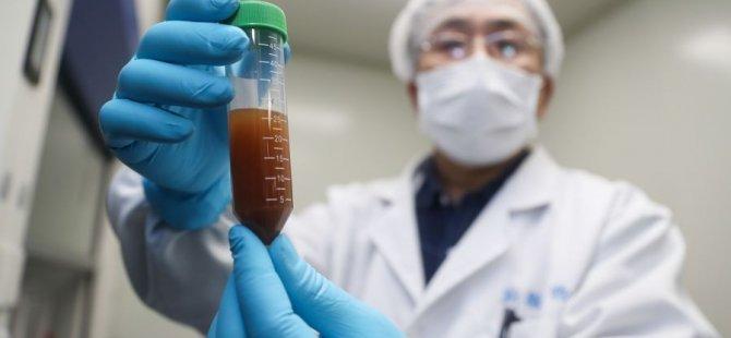 WHO: Koronavirüse karşı 20 aşı geliştirildi