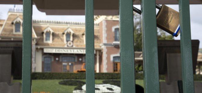 Disneyland da kitit vurdu