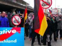 AfD'nin ırkçı olduğu kabul edildi