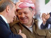 'Erdoğan cesur bir siyasetçi, barış için Demirtaş'ı serbest bırakmalı'