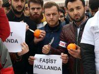 Portakal protestocuları Alman basınında