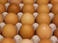 Yumurta skandalı Güney Kore'ye sıçradı