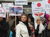 Hollanda'da Arakan protestosu