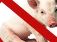 İsveçli imam: Domuz eti yiyen eşcinsel olur
