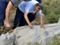 Atatürk heykeli çalılıkta bulundu