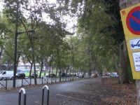 Fransa'da PKK yandaşlarına park tahsisi
