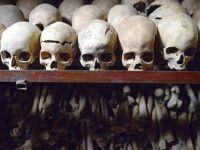 Fransa'dan kafataslarını istediler