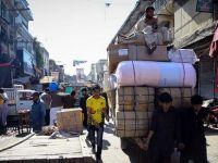 Pakistan'da kediye 'türbe' inşa edildi