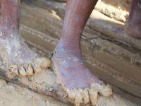40 milyon 300 bin 'modern köle' var'