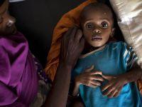 FAO 'Açlığa son' diyecek