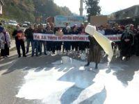 Süt üreticileri isyan etti: Yiyecek ekmeğimiz yok