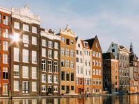 Hollanda'dan yeni sosyal yardım yasası