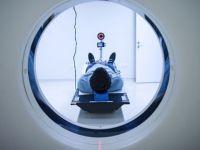 2030'da 30 milyon Parkinson hastası olacak