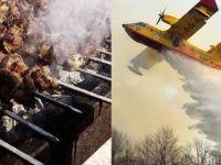 Orman yakan mangalcılara 13,5 milyon avro ceza