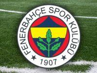 Fenerbahçe, Michael Frey'i Nürnberg'e kiraladı