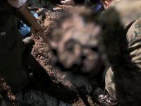 Milletvekili ve ailesinin cesetleri bulundu