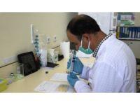 ELISA testi ile hem koronavirus hem de antikorları daha çabuk tespit edilebilecek